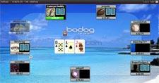 Bodog Poker